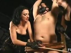 Selection cock and ball whipping