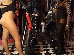 German Amateur Dominas.wmv